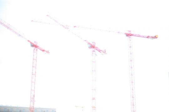 Talking Cranes I, 2008